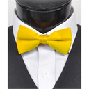 SY-BT-13038-Yellow-Men'sBowTies2.5'PolySatinBanded-Retail$4.82